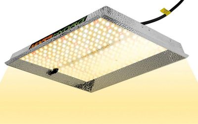 Best LED Grow Lights Reviews & Buyer´s Guide [Updated July 2019]
