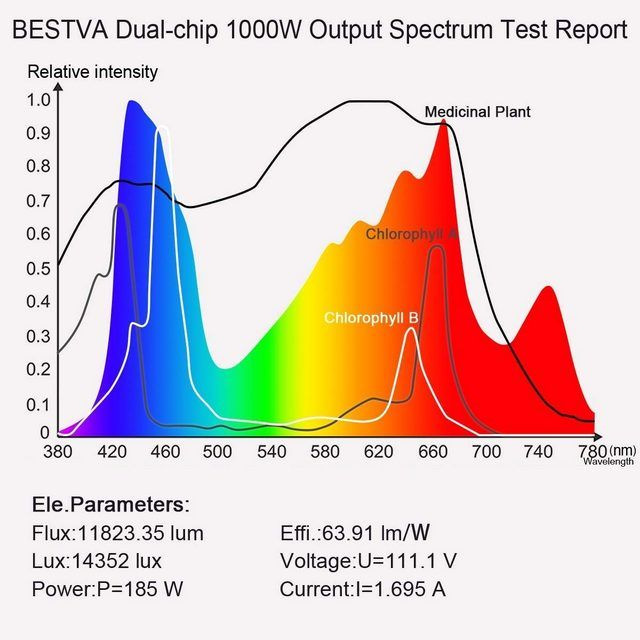 BESTVA 1000W output expectrum