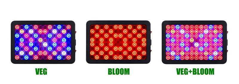 best 1000w led grow lights