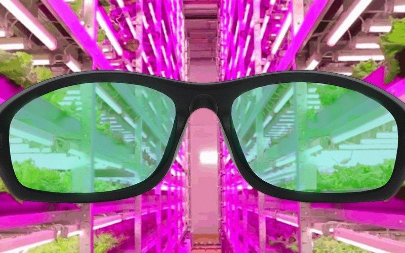 best led grow room glasses