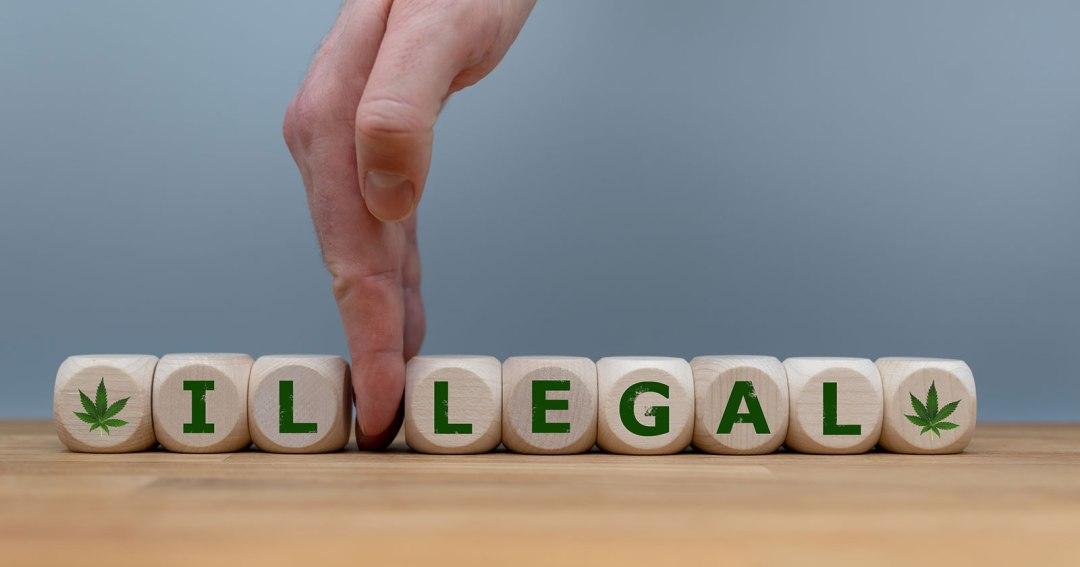 Marijuana Legalization and the Company Drug Test
