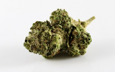 Best Hemp Flower Review | Top 10 Hemp Buds Strains to Buy Online