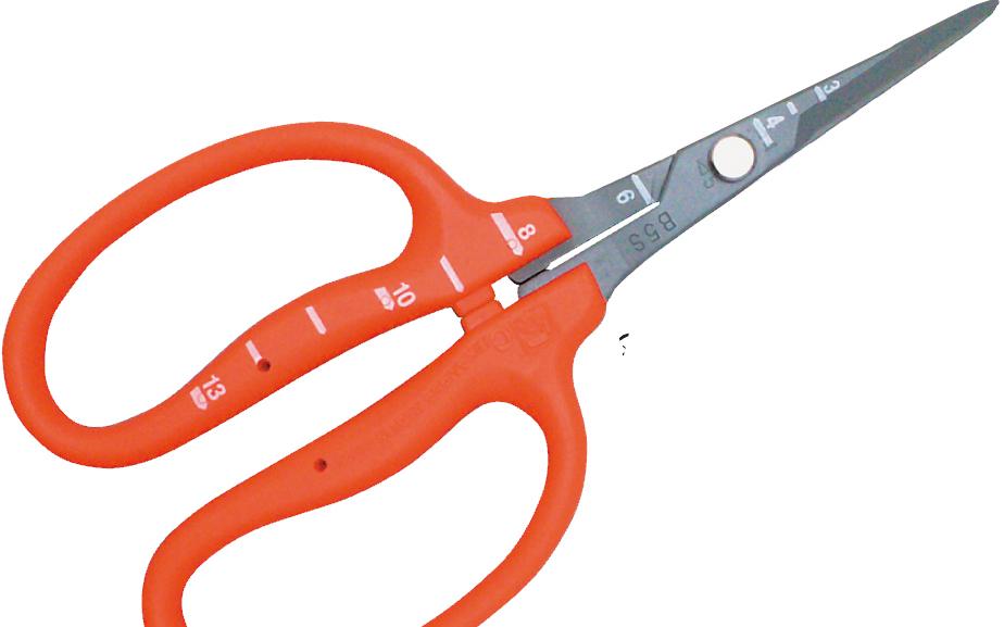 Chikamasa scissors review