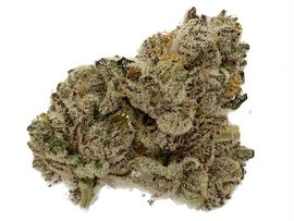 Ice Cream Cake strongest indica strain