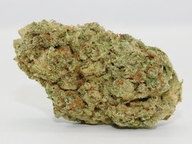 Sunshine strongest sativa strain