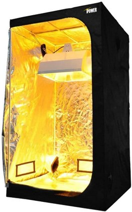 iPower GLTENTXS2 2x4 grow tent