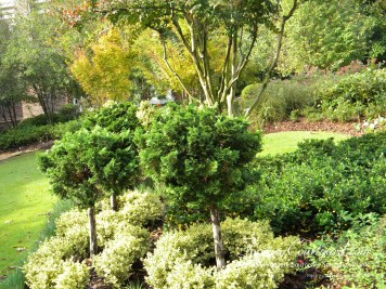 topiary-courtyard-product-w48