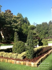 topiary-courtyard-product-w69