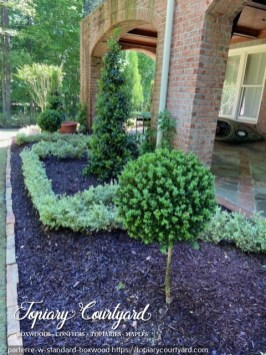 Parterre with standard boxwood