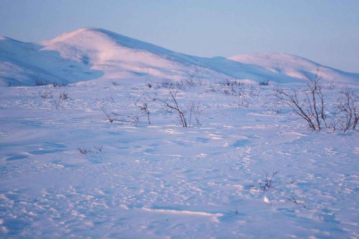 valley-flats-covered-with-snow-725x483.jpg