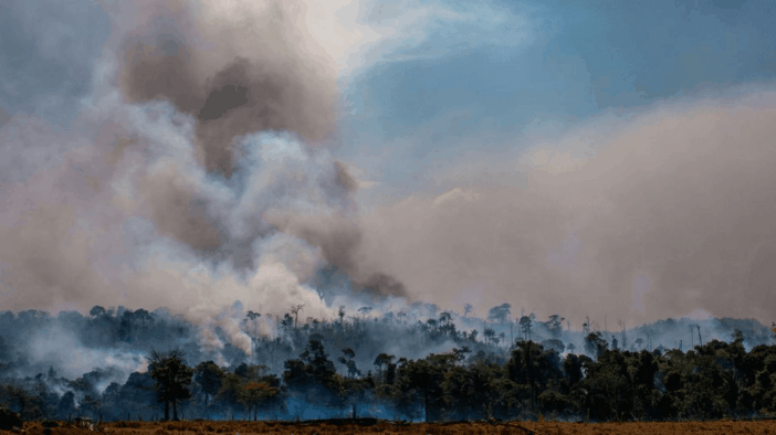 Wildfires in Indonesia 2020, further proof that the world is on fire