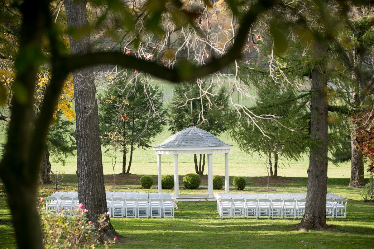 Wedding Celebrant quits 5 weeks prior to our big day No