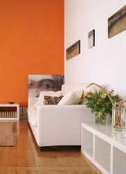 naranja wall colores orange colors comex interiores paredes casas con el conquista zanahoria para pintura pared sala pinturas espacios interior