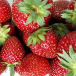 イチゴ狩りin埼玉の口コミを人気の農園ごとにまとめてみた。