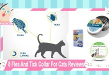 8 Flea And Tick Collar For Cats Reviews