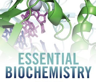 Essential Biochemistry pdf