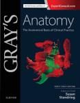Gray's anatomy 42nd edition pdf free download