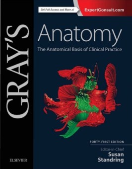 Gray's anatomy 42nd edition pdf