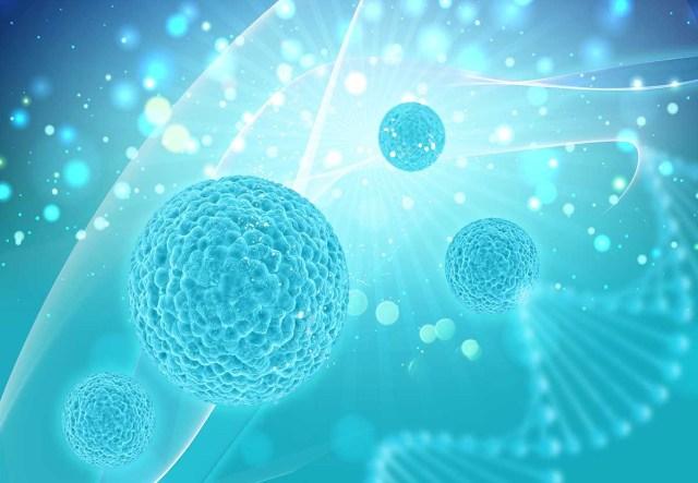 Acute lymphoblastic leukemia in Adults survival rate