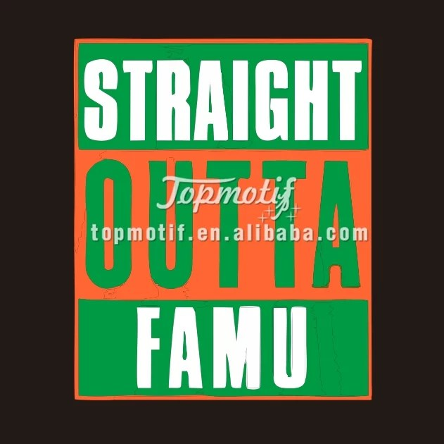 Custom FAMU Vinyl Transfer Iron On Motif
