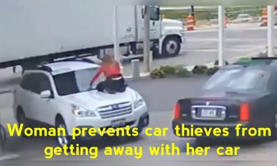 Woman jumps on her moving car, battle off car thieves   Watch