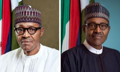 Presidency reveals new official portrait that costs taxpayers millions