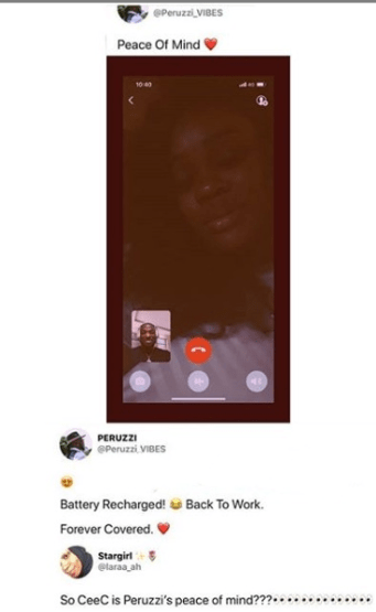 Peruzzi-Ceec screenshot
