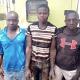 3 Ansaru terrorists arrested in Kaduna