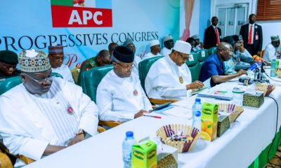 APC NEC meeting postponed as governors shout at each other