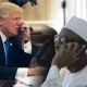 donald-trump-and-buhari topnaija.ng