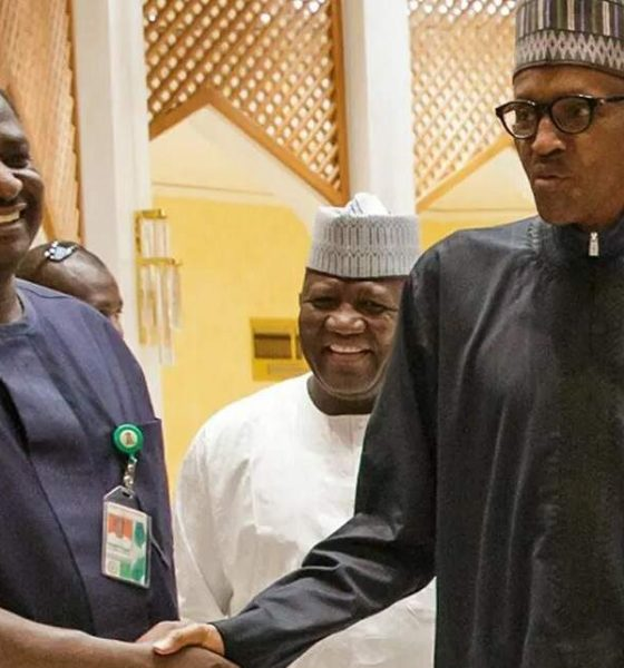 Why Nigeria is lucky to have Buhari - Femi Adesina