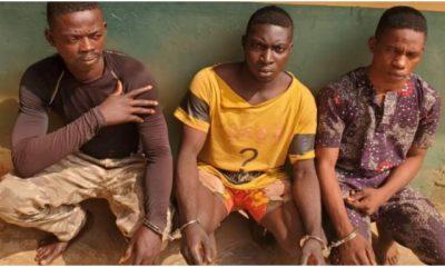 3 men arrested for gang-raping lady in Ogun topnaija.ng