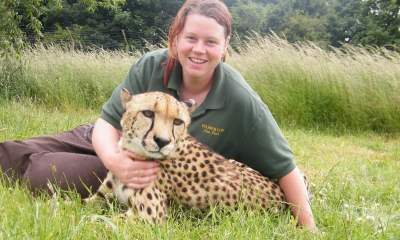 Tiger kills female zookeeper topnaija.ng