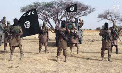 """Insecurity: Niger groups sign """"N20m peace deal"""" with Boko Haram"""
