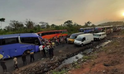 Passengers stranded on Benin-Ore Expressway over robbery attack [VIDEO]