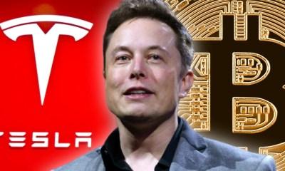 Tesla cars can be bought with Bitcoin, Elon Musk declares