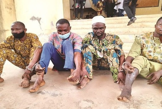 Police arrest four for phone theft at Governor Akeredolu's inauguration-TopNaija.ng