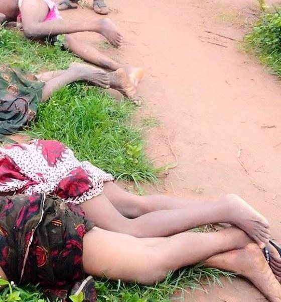 Fulani herdsmen kill four women, 2 others in Nasarawa