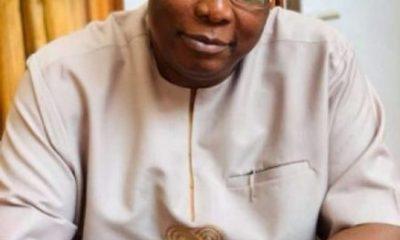 Buhari will finish tenure despite demand for removal, says Ojudu