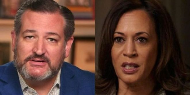 Ted Cruz Calls Out Kamala Harris For Border 'Mess' – Says She Has 'Only One Option' To Handle It