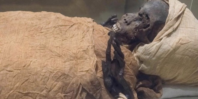 Egypt: 22 mummies move to new museum in grand parade