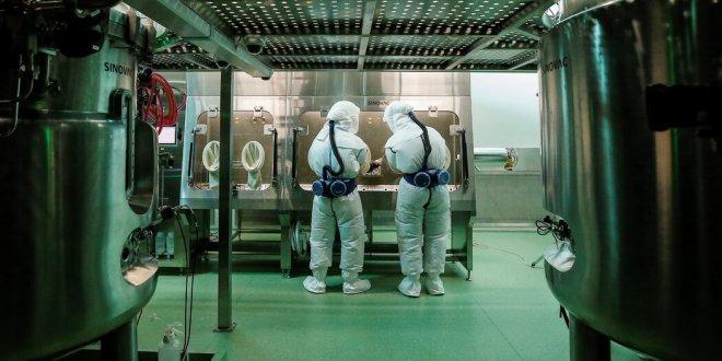 Fight Over Covid's Origins Renews Debate on Risks of Lab Work