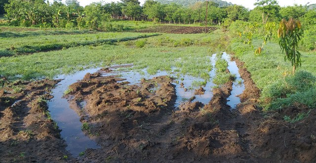 Sowing Water: A Cuban Farm's Bid for Sustainability