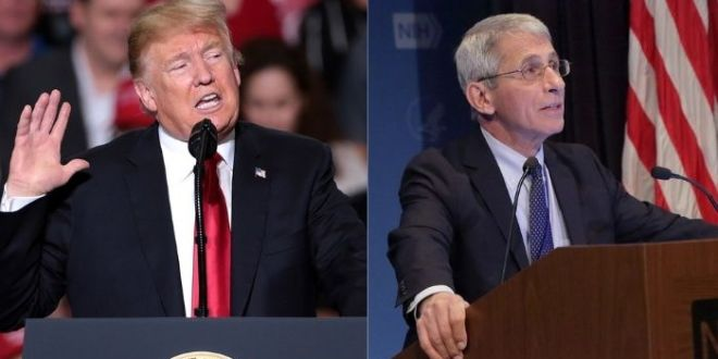 Trump Rips Fauci After Newly-Released Emails: 'What Did He Know And When Did He Know It?'