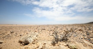 Climate Change: How 1.300 Billion Africans Cause Least But Suffer Most