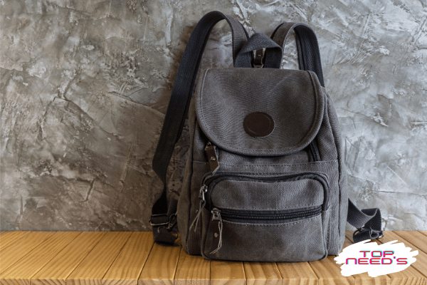 best backpack brands in india