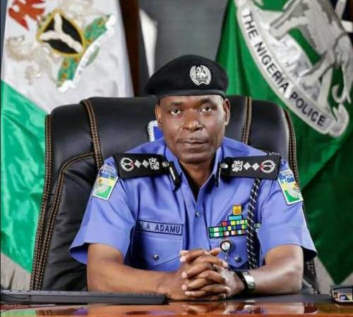 Despite reported extra-judicial killings, IGP says police officers never fired at #EndSARS protesters