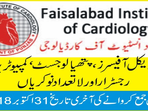 jobs in faisalabad hospital