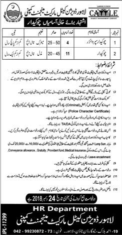 Jobs in punjab government 2019