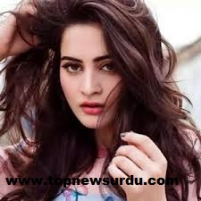 Aiman Khan biography, age, family, dramas, and wedding 6